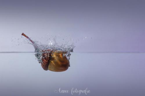 Splash autumn